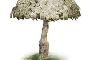 Birthday Money Tree Ideas