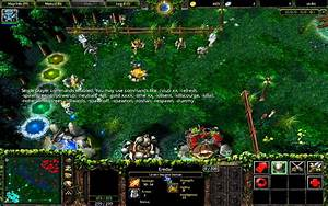 I Can39t See Shadow Demon And Warlock39s Golem In DotA Arqade