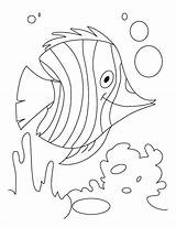 Coloring Water Pages Fish Animals H2o Flutter Monet Underwater Claude Printable Rainbow Plants Sheets Colouring Drawing Animal Dolphin Bestcoloringpages Ocean sketch template