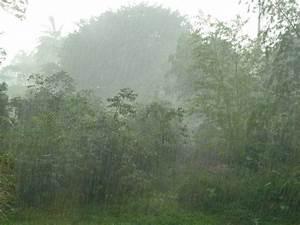 Hard Rain   Thesacredpath – Liviz