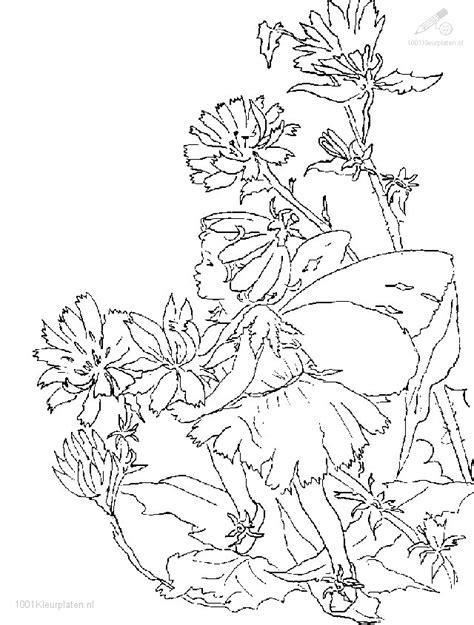 Kleurplaat Elfen Draakjes by Kleurplaat Fantasie Kleurplaat Elfjes 20