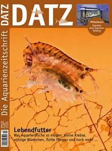 Goldfische Kaufen Berlin : datz 10 oktober 2015 ~ Lizthompson.info Haus und Dekorationen