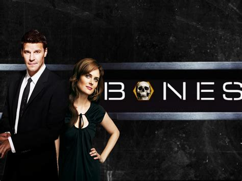 (fox)nothing sparks the fires of romance like crime tape and a pile of bones. Bones - Bones Wallpaper (7803936) - Fanpop