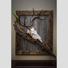 Decor Incredible Collection Of Antler Decor For Living