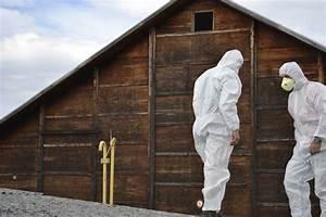 Likvidace azbestu cena praha