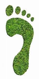 ökologischer Fußabdruck Berechnen : der kologische fu abdruck th ringisches umweltzentrum e v eisenach ~ Themetempest.com Abrechnung