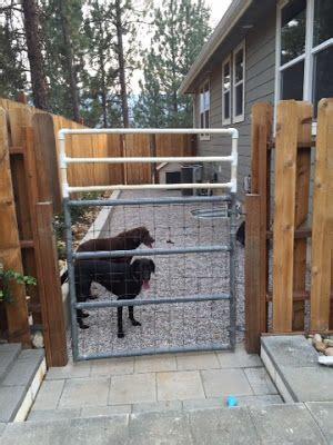 Dog Kennel Backyard