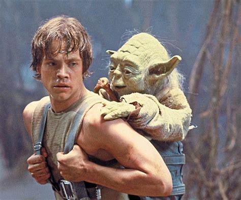 mark hamill actor luke skywalker actor mark hamill has his dog turned away