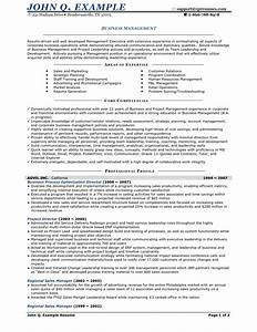 small business owner resume template bongdaaocom With business owner resume template
