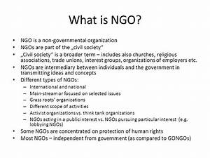 The Role of NGOs in the protection of human rights - ppt ...