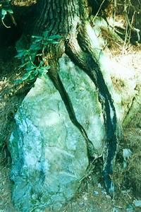 GEOL342 - Sedimentation and Stratigraphy