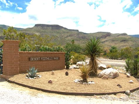 office furniture rock awesome desert landscaping ideas with lovely desert plants