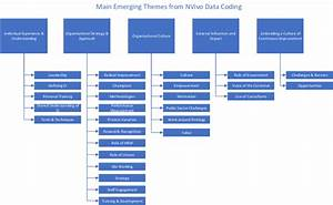 Grouping Of Emerging Themes From Nvivo Coding