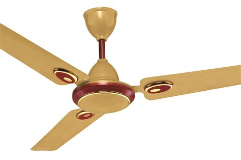 Novelty Ceiling Fans Lighting And Ceiling Fans