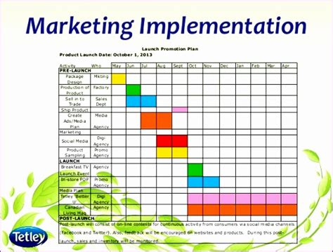 social media plan template excel exceltemplates
