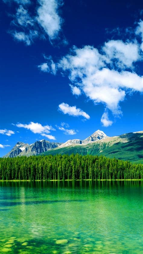 ladda ner bakgrundsbilder till mobilen gratis fina bakgrundsbilder