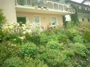 Dauerbepflanzung Für Balkonkästen : ideen f r dauerbepflanzung von gro en balkonk beln mein ~ Michelbontemps.com Haus und Dekorationen