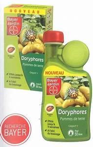 Produit Contre Les Guepes : doryphores pommes de terre ~ Dailycaller-alerts.com Idées de Décoration