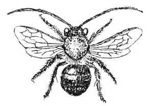Vintage Bee Clip Art Free