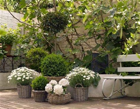 best 25 courtyard gardens ideas on