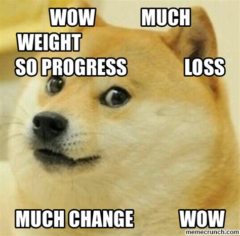 Weight Loss Memes - doge weight loss