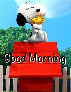 Good Morning Snoopy : 1106 best images about woodstock on pinterest peanuts snoopy the peanuts and woodstock ~ Orissabook.com Haus und Dekorationen