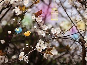 Cute Wallpaper and Background   1600x1200   ID:280121