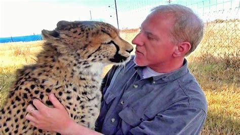 man reunites  african cheetah big cat   year