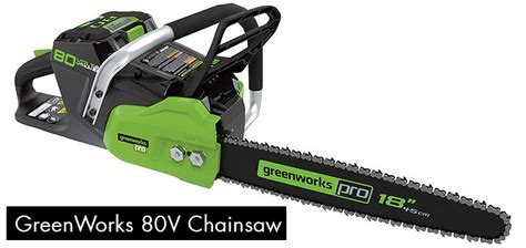 The EGO Power Plus Chainsaw   The Future of Power Tools