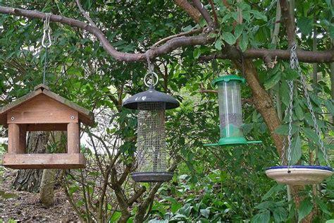 bird feeder hangers how to hang a bird feeder