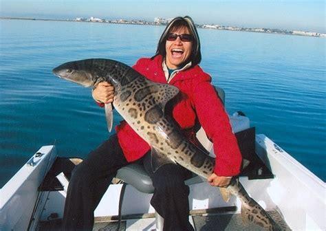 leopard shark ever caught record largest fishes fishing fish lobster usa biggest triakis semifasciata rare giant sea ocean california pacific
