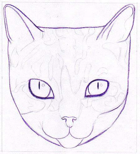draw  cat learn   create  unique colorful