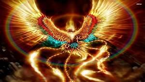 Cool Phoenix Wallpaper - WallpaperSafari