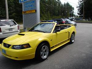 Pics of my new and first Mustang, a 2002 GT convertible - Ford Mustang Forum