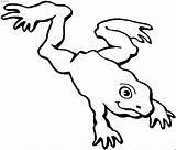 Frog Frosch Disegni Landet Anfibi Ausmalbilder Coloring Rana Clipart Hopping Tiere Malvorlage Malvorlagen Colorare Colorear Grenouille Imprimer Dibujo Disegno Konabeun sketch template