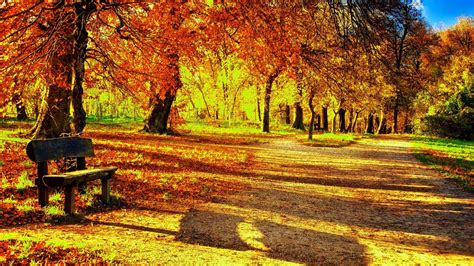Aesthetic Fall Themed Desktop Backgrounds by Fall Wallpapers For Desktop 72 Background Pictures