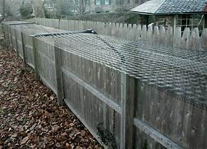 Outdoor cat enclosures great idea to secure the for Dog fence enclosure