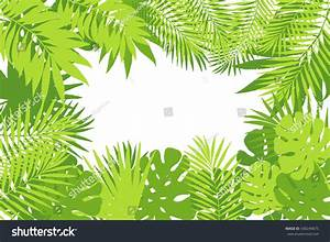Summer Tropical Palm Tree Leaves Background Stock Vector ...