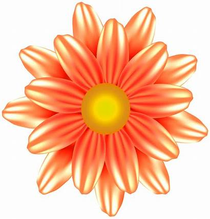 Clipart Flower Orange Flowers Transparent Yopriceville