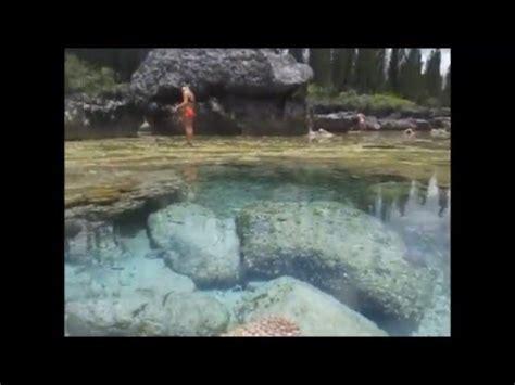aquarium isle of pines aquarium 2 isle of pines new caldonia