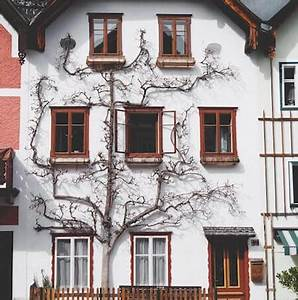 Haus Nebenkosten Berechnen : kaufpreis rechner berechnen sie den preis ihres ~ Themetempest.com Abrechnung