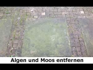 Moos Entfernen Terrasse : kiesel waschbeton platten terrasse reinigen berlin ~ Michelbontemps.com Haus und Dekorationen