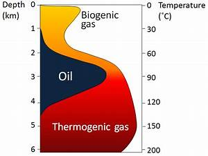 Depth And Temperature Limits For Biogenic Gas  U2013 Physical