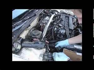 1990 Honda Civic Wiring Harness Tail : 1990 integra engine wiring harness install youtube ~ A.2002-acura-tl-radio.info Haus und Dekorationen