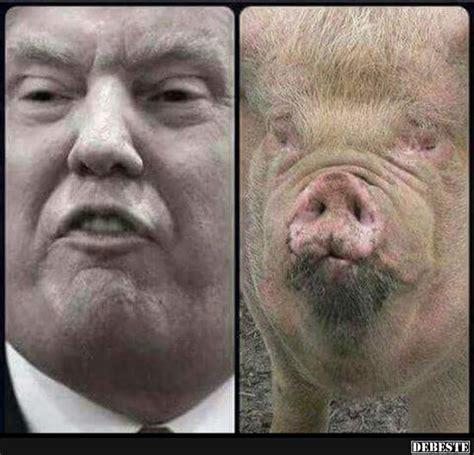 zwillinge lustige bilder sprueche witze echt lustig
