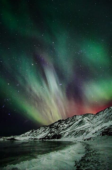 iceland in february northern lights beautiful february sky in iceland auroras pinterest