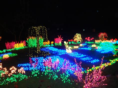 botanical gardens christmas lights decorating ideas for
