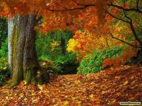 Pumpkin Patch Lexington Kentucky by Debz Ramblings Fall Season