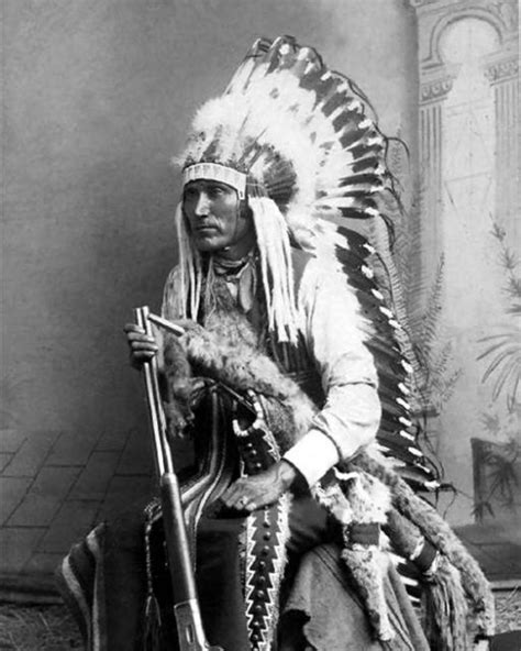 Indian Chief Image by Buy American Kiowa Indian Chief Lone Wolf Premium 8