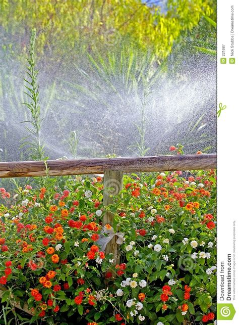 Wooden Fence And Wild Flowers Royaltyfree Stock Image